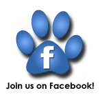 Like Just Cats Veterinary Services on Facebook!